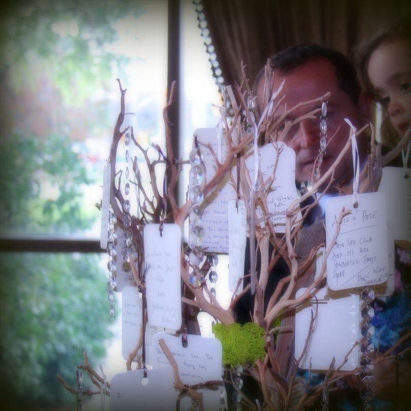 The wishing tree )