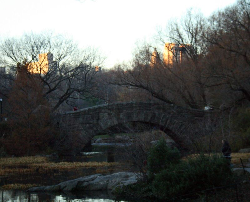 The bridge near the pond, Central Park, NY