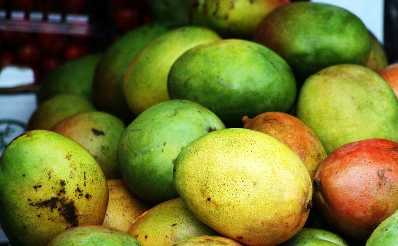 Go mangoe
